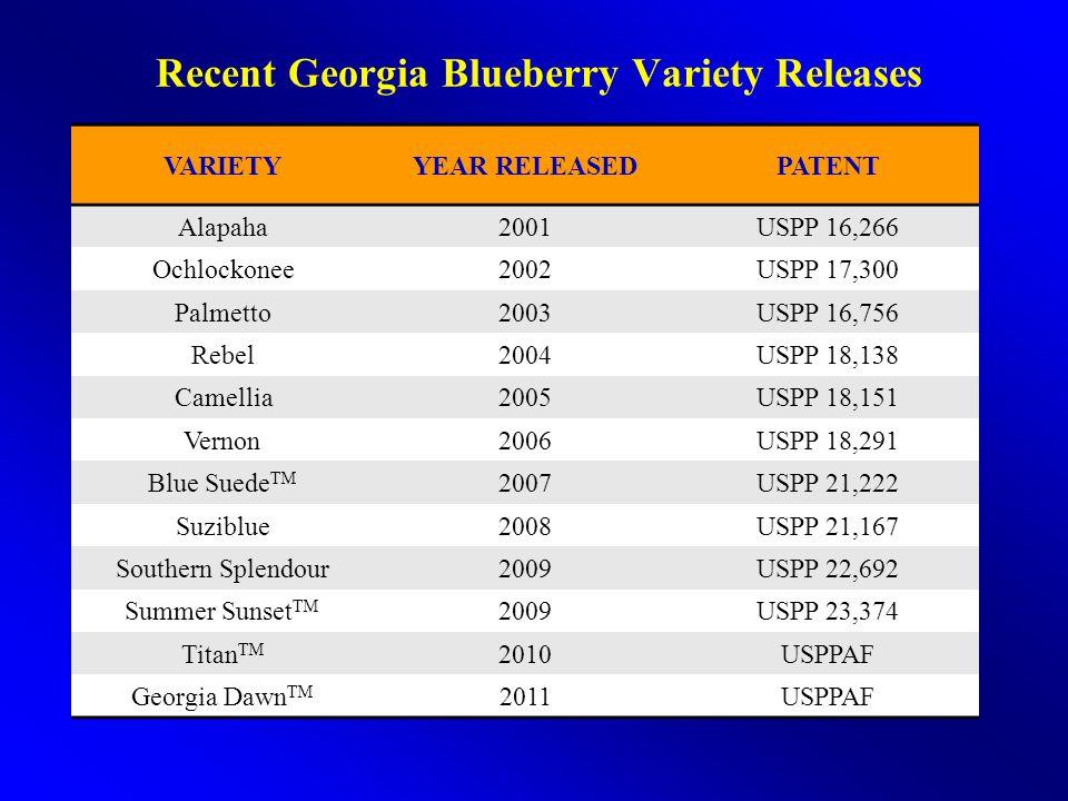 Recent Georgia Blueberry Variety Releases VARIETYYEAR RELEASEDPATENT Alapaha2001USPP 16,266 Ochlockonee2002USPP 17,300 Palmetto2003USPP 16,756 Rebel20