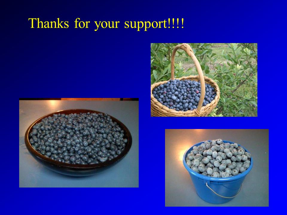 Thanks for your support!!!!