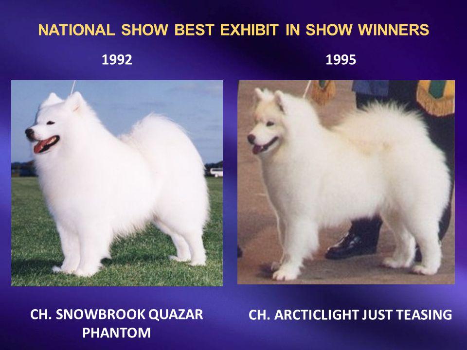 CH. SNOWBROOK QUAZAR PHANTOM 19921995 CH. ARCTICLIGHT JUST TEASING NATIONAL SHOW BEST EXHIBIT IN SHOW WINNERS