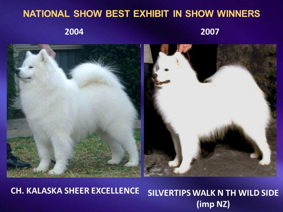 20042007 CH. KALASKA SHEER EXCELLENCE SILVERTIPS WALK N TH WILD SIDE (imp NZ) NATIONAL SHOW BEST EXHIBIT IN SHOW WINNERS
