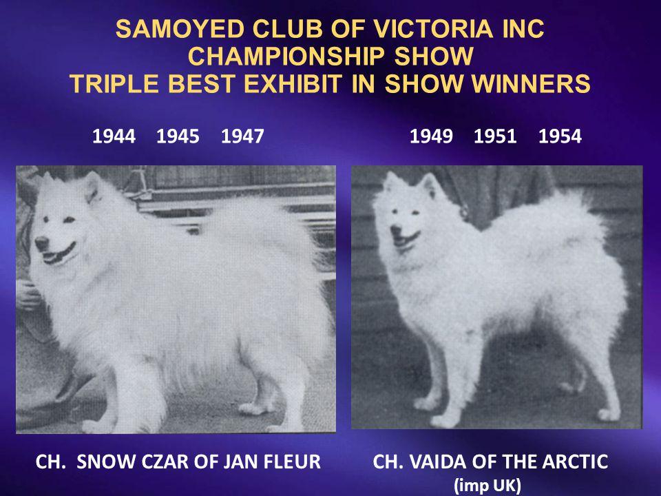 SAMOYED CLUB OF VICTORIA INC CHAMPIONSHIP SHOW TRIPLE BEST EXHIBIT IN SHOW WINNERS 1944 1945 19471949 1951 1954 CH. SNOW CZAR OF JAN FLEUR CH. VAIDA O