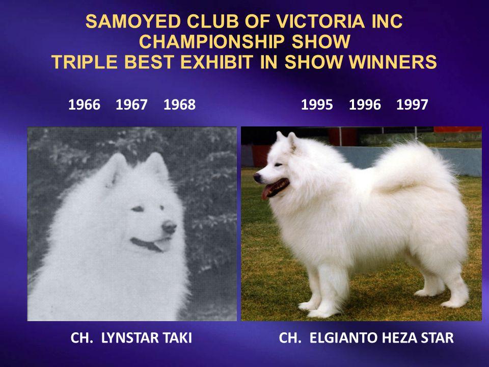 SAMOYED CLUB OF VICTORIA INC CHAMPIONSHIP SHOW TRIPLE BEST EXHIBIT IN SHOW WINNERS 1966 1967 1968 1995 1996 1997 CH. LYNSTAR TAKI CH. ELGIANTO HEZA ST