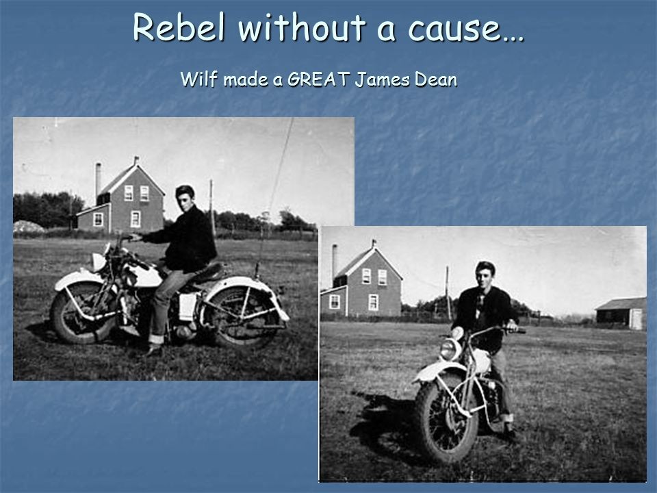 Rebel without a cause… Wilf made a GREAT James Dean