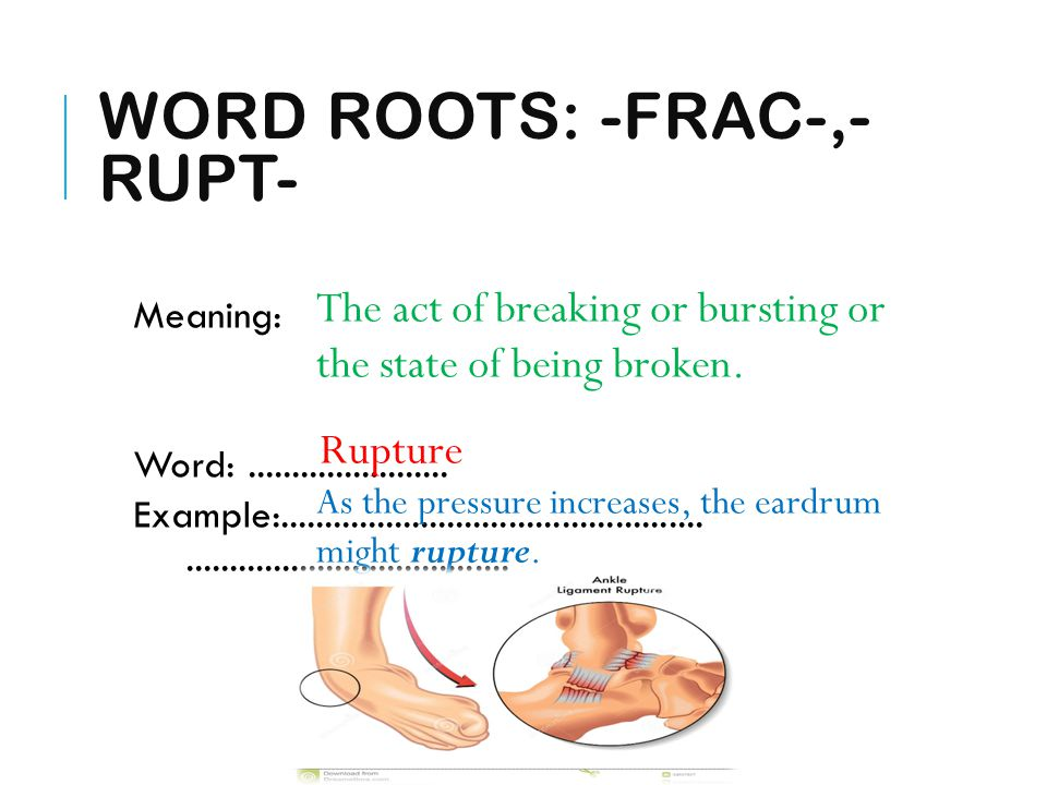WORD ROOTS: -FRAC-,- RUPT- Meaning: Word:....................... Example:.............................................................................