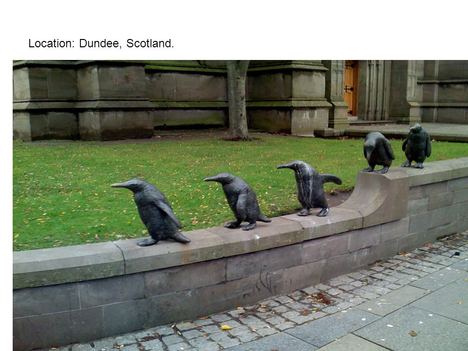 Location: Dundee, Scotland.