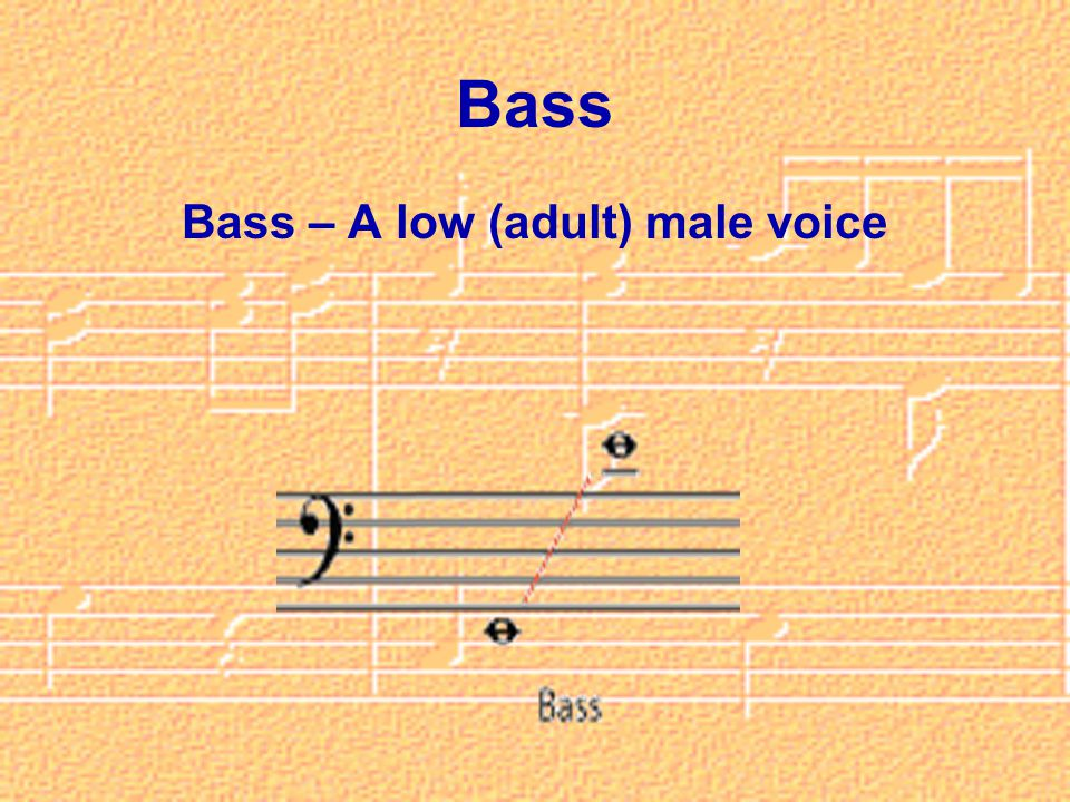 Bass Bass – A low (adult) male voice