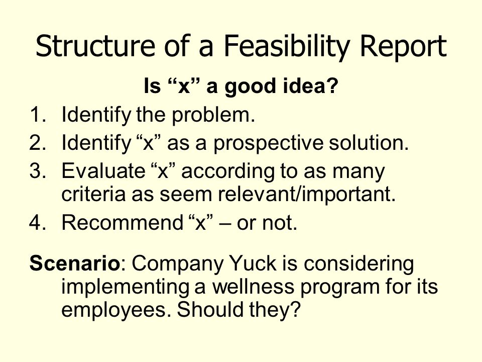 Structure of a Feasibility Report Is x a good idea.