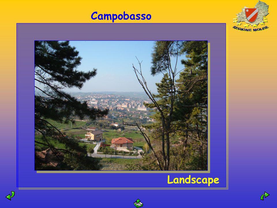 Campobasso Landscape