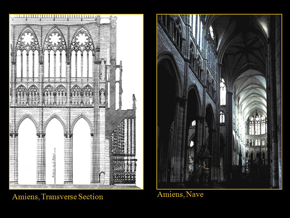 Amiens, Transverse Section Amiens, Nave