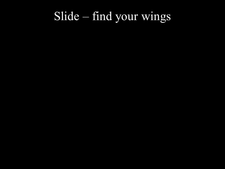 Slide – find your wings