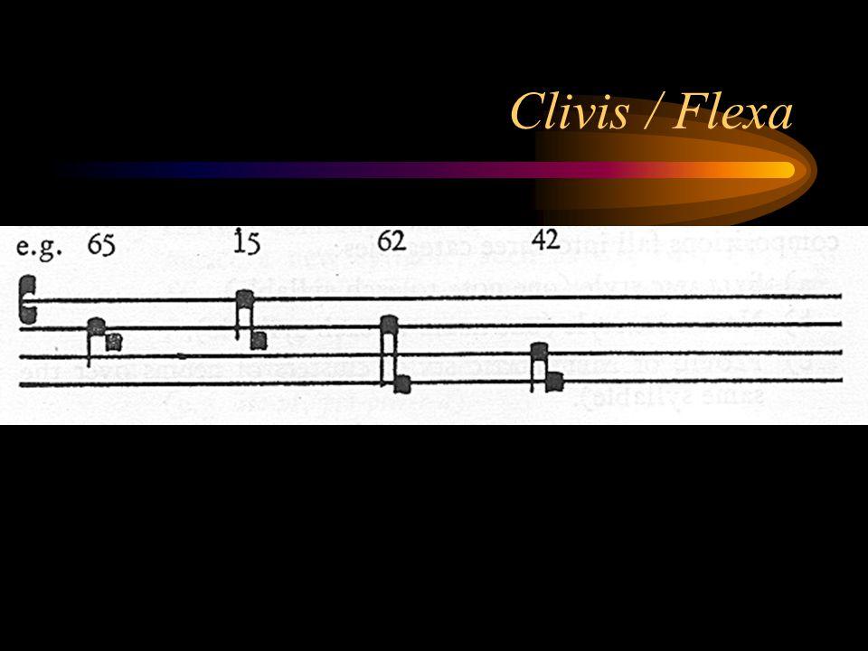 Clivis / Flexa