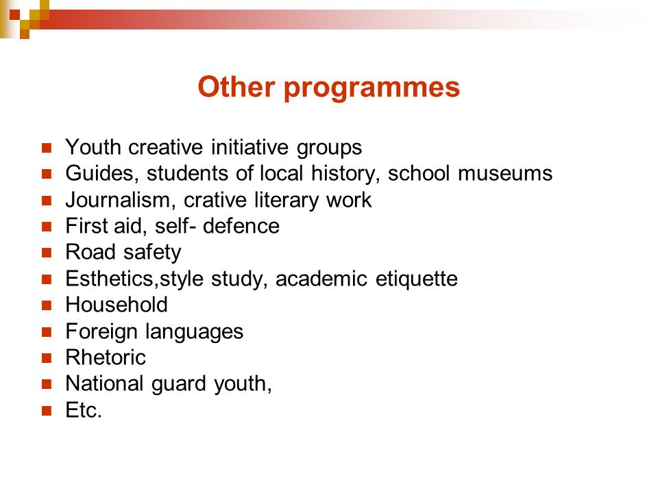 Other programmes Youth creative initiative groups Guides, students of local history, school museums Journalism, crative literary work First aid, self- defence Road safety Esthetics,style study, academic etiquette Household Foreign languages Rhetoric National guard youth, Etc.