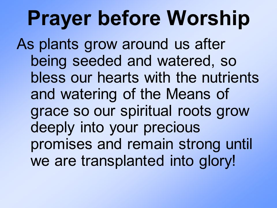 Prayer before Worship As plants grow around us after being seeded and watered, so bless our hearts with the nutrients and watering of the Means of gra