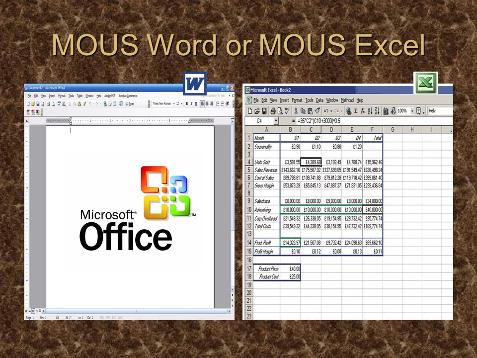 MOUS Word or MOUS Excel