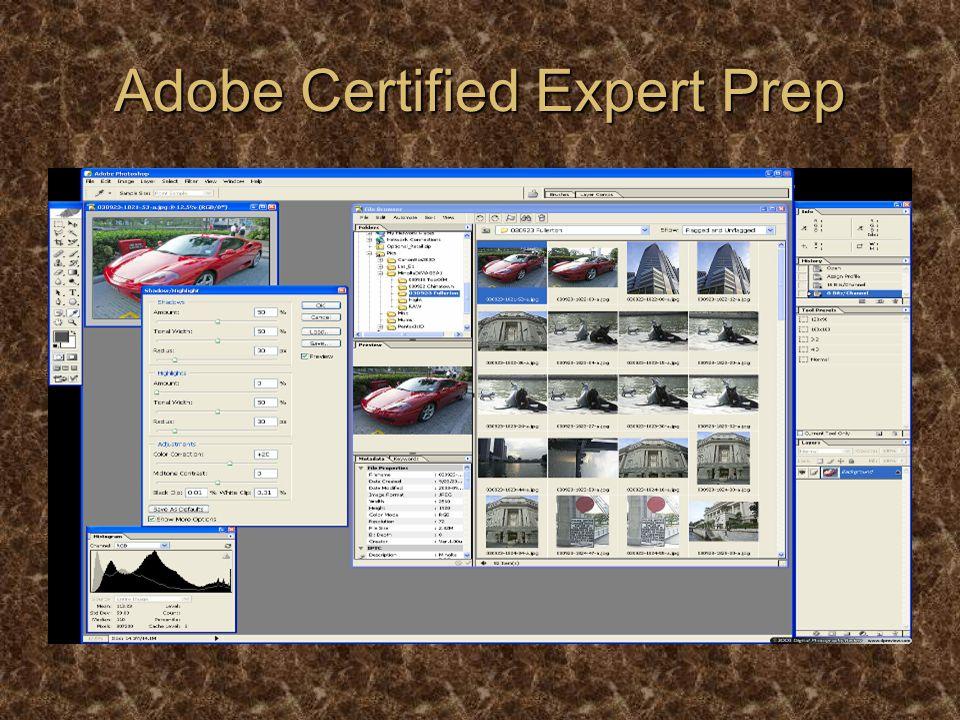 Adobe Certified Expert Prep