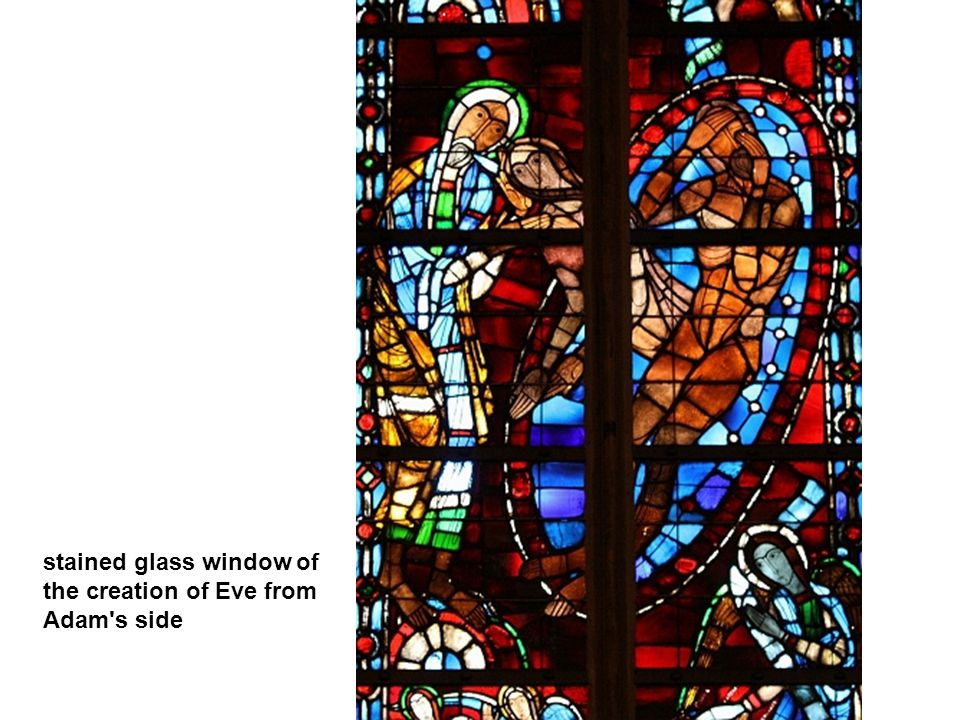 stained glass window of the creation of Eve from Adam s side