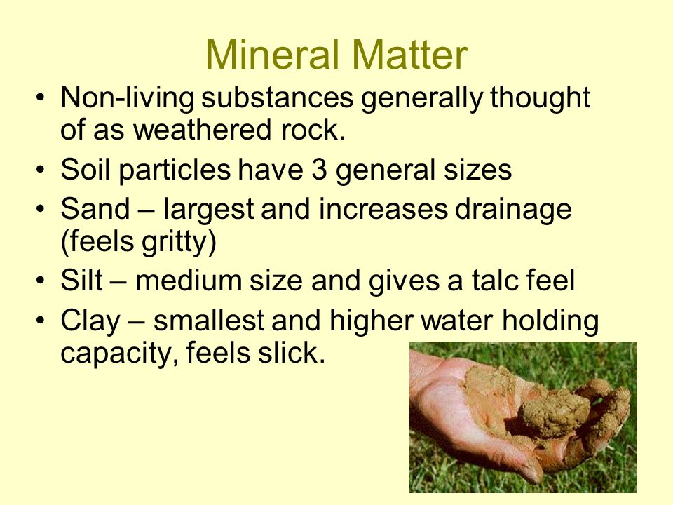 Mineral Matter Non-living substances generally thought of as weathered rock.