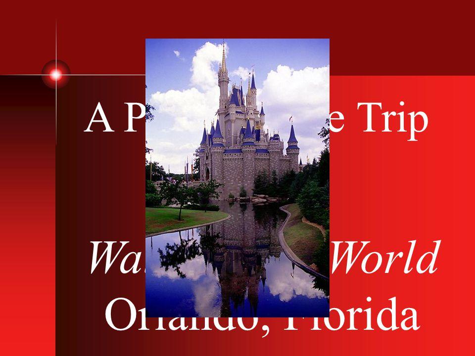 A Performance Trip to Walt Disney World Orlando, Florida