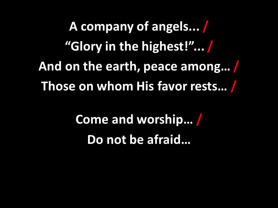 """A company of angels... / """"Glory in the highest!""""... / And on the earth, peace among… / Those on whom His favor rests… / Come and worship… / Do not be"""
