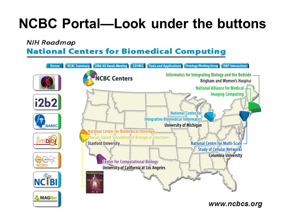 NCBC Portal—Look under the buttons www.ncbcs.org