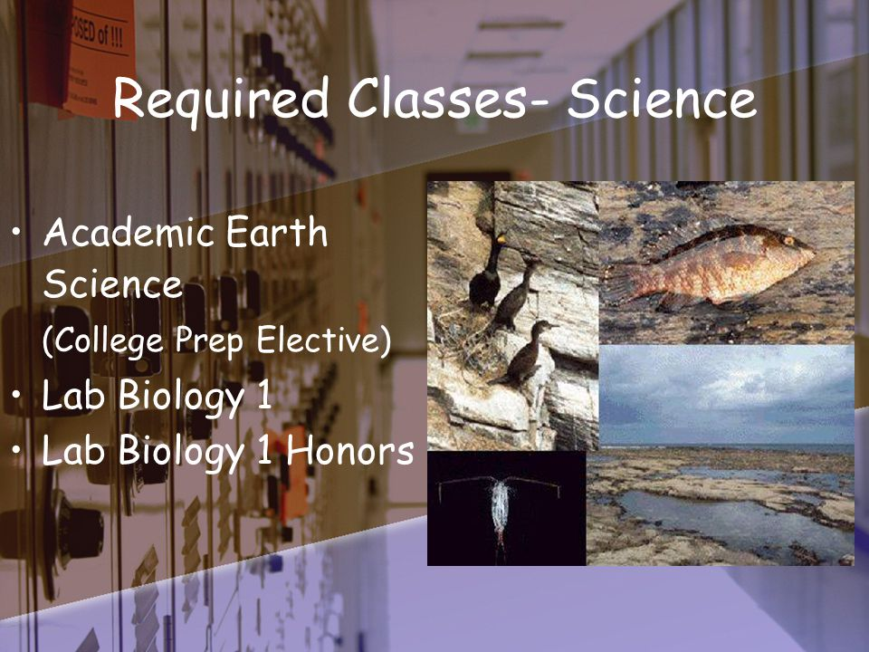 Required Classes- Science Academic Earth Science (College Prep Elective) Lab Biology 1 Lab Biology 1 Honors
