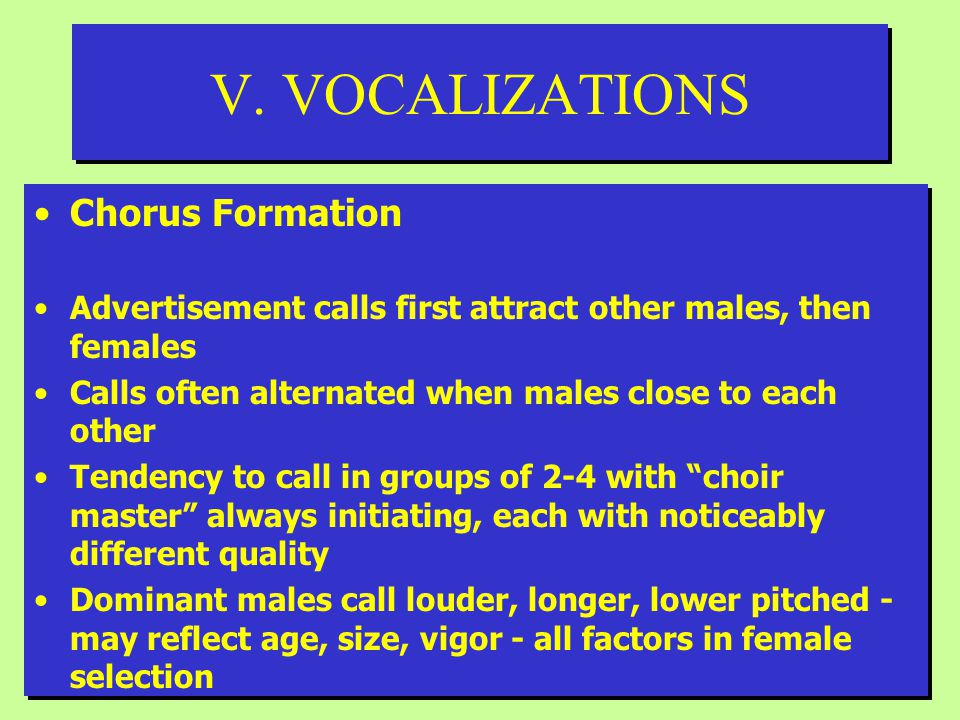 V. VOCALIZATIONS Chorus Formation Advertisement calls first attract other males, then females Calls often alternated when males close to each other Te