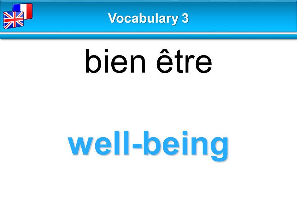 well-being bien être Vocabulary 3