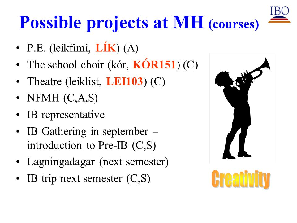 Possible projects at MH (courses) P.E.