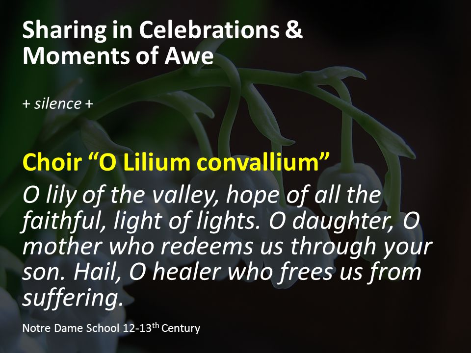 Sharing in Celebrations & Moments of Awe + silence + Choir O Lilium convallium O lily of the valley, hope of all the faithful, light of lights.