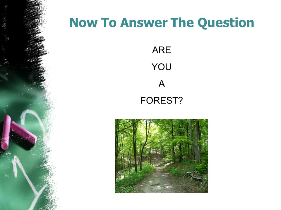 Now To Answer The Question ARE YOU A FOREST?