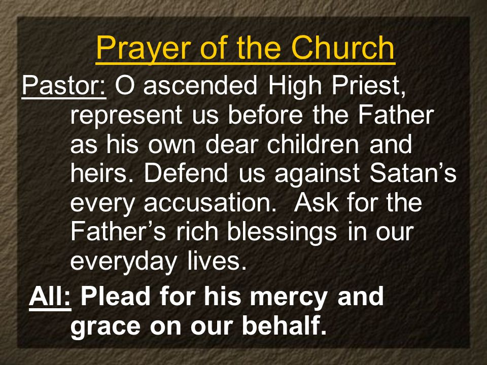 Prayer of the Church Pastor: O ascended High Priest, represent us before the Father as his own dear children and heirs.