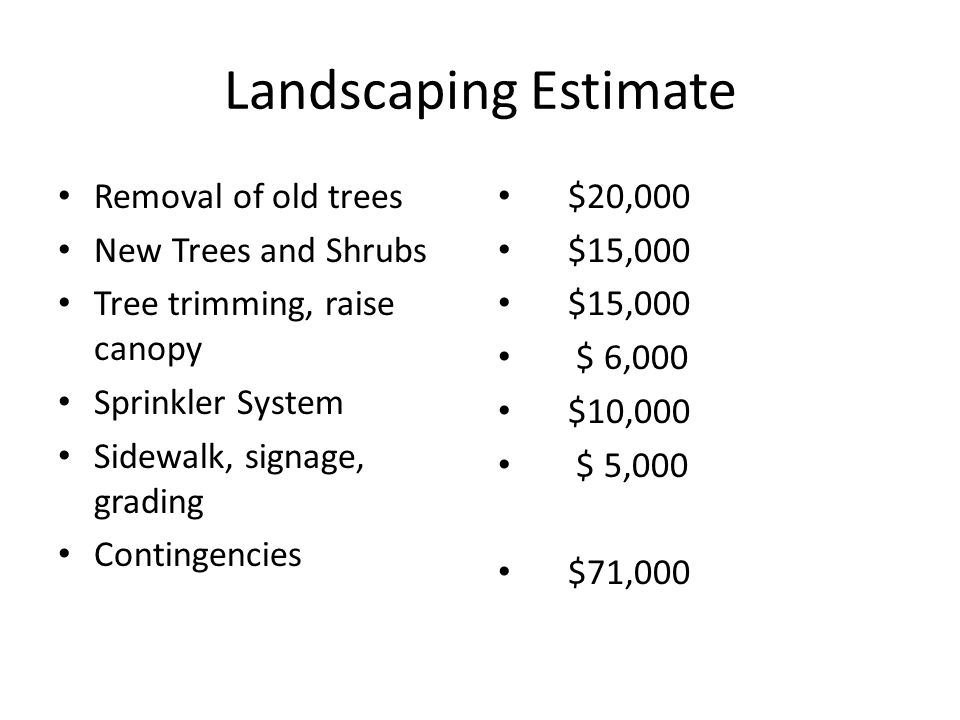 Landscaping Estimate Removal of old trees New Trees and Shrubs Tree trimming, raise canopy Sprinkler System Sidewalk, signage, grading Contingencies $20,000 $15,000 $ 6,000 $10,000 $ 5,000 $71,000