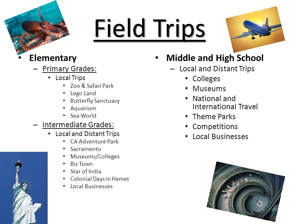 Field Trips Elementary – Primary Grades: Local Trips Zoo & Safari Park Lego Land Butterfly Sanctuary Aquarium Sea World – Intermediate Grades: Local a