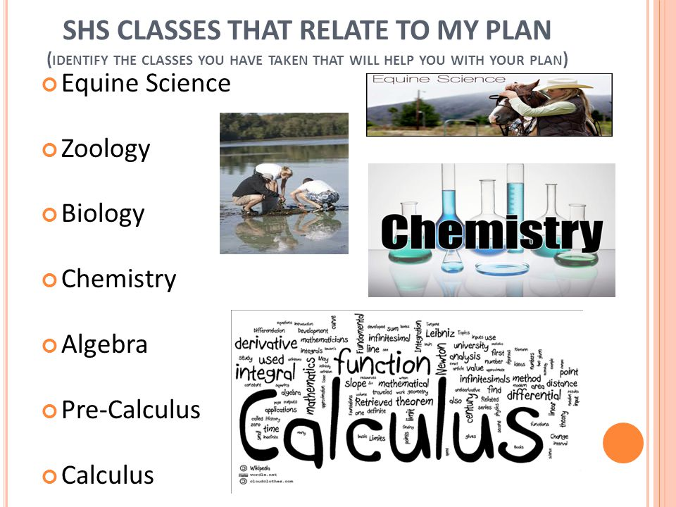 SHS CLASSES THAT RELATE TO MY PLAN ( IDENTIFY THE CLASSES YOU HAVE TAKEN THAT WILL HELP YOU WITH YOUR PLAN ) Equine Science Zoology Biology Chemistry Algebra Pre-Calculus Calculus