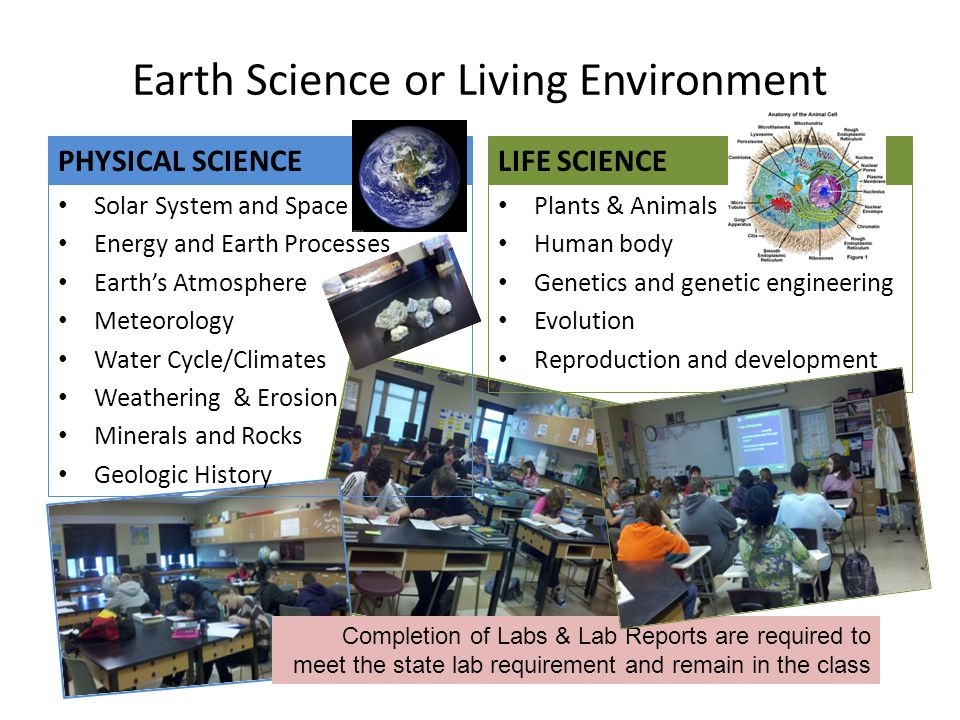 Earth Science or Living Environment LIFE SCIENCE Plants & Animals Human body Genetics and genetic engineering Evolution Reproduction and development PHYSICAL SCIENCE Solar System and Space Energy and Earth Processes Earth's Atmosphere Meteorology Water Cycle/Climates Weathering & Erosion Minerals and Rocks Geologic History Completion of Labs & Lab Reports are required to meet the state lab requirement and remain in the class