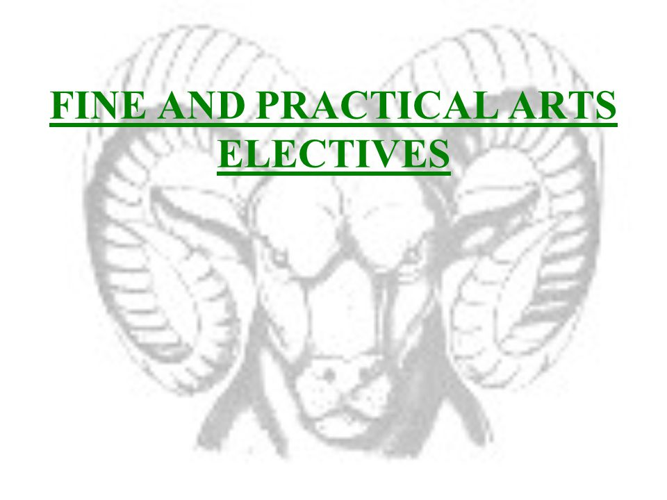 FINE AND PRACTICAL ARTS ELECTIVES