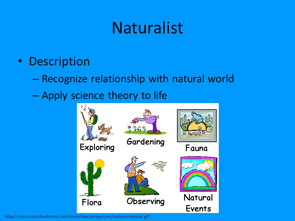 Naturalist Description – Recognize relationship with natural world – Apply science theory to life http://www.ourschoolzone.com/main/dox/project/mi/nat