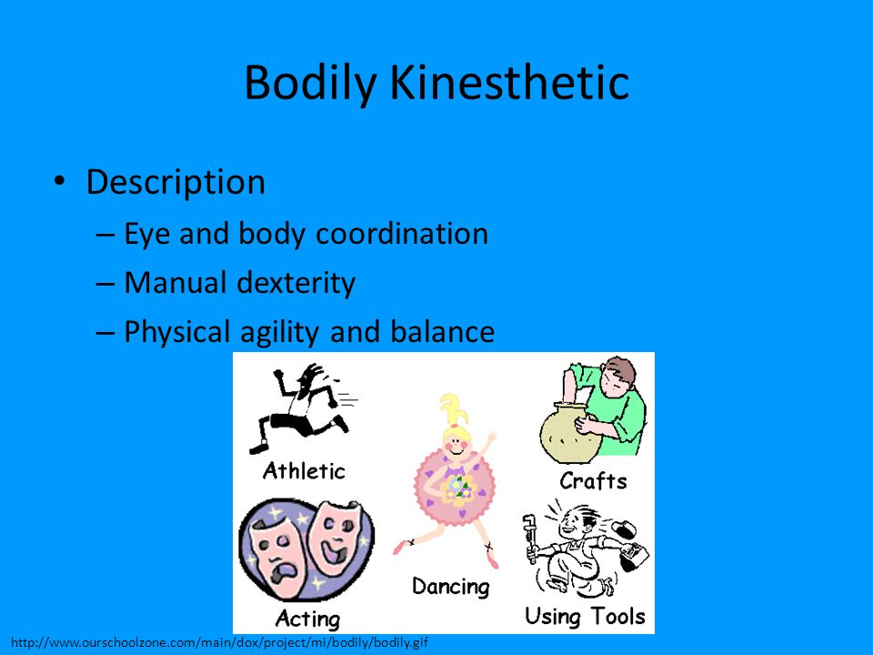 Bodily Kinesthetic Description – Eye and body coordination – Manual dexterity – Physical agility and balance http://www.ourschoolzone.com/main/dox/pro