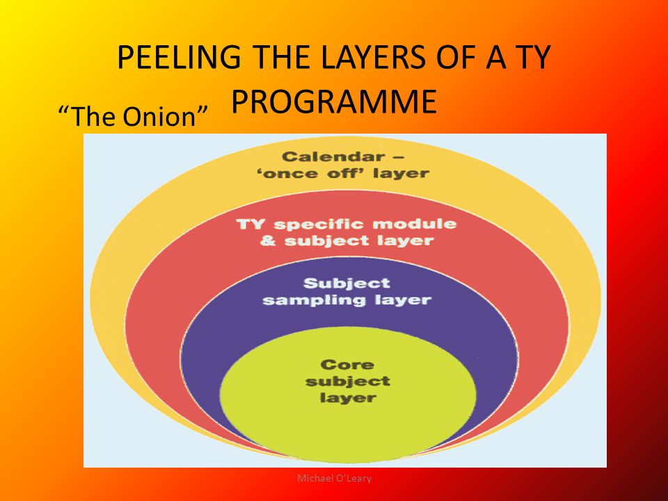 PEELING THE LAYERS OF A TY PROGRAMME The Onion Michael O Leary