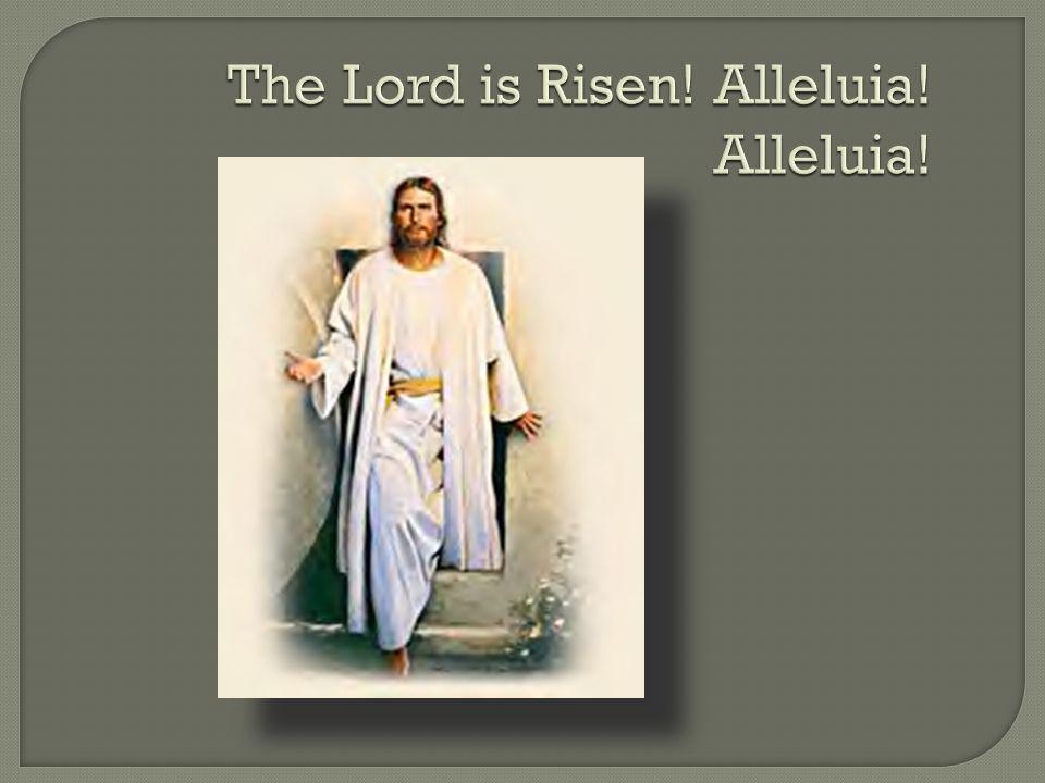 The Lord is Risen! Alleluia! Alleluia!