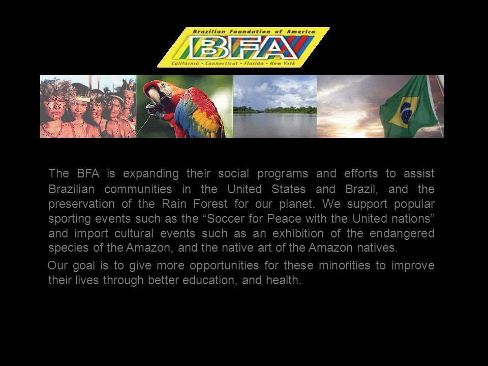 The Brazilian Foundation (BFA) was founded in New York in early 2001 and San Francisco in 2005.