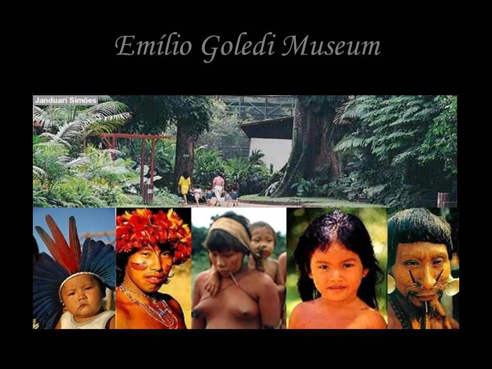 THE BRAZILIAN RAINFOREST PEOPLE, CREATURES, SPECIES AND MUSIC WITH THE AMAZON YOUTH CELLISTS CHOIR AND EMILIO GOELDI MUSEUM HAIR PIECES EXHIBITION AND INDEGENOUS PEOPLES ARTIFACTS.