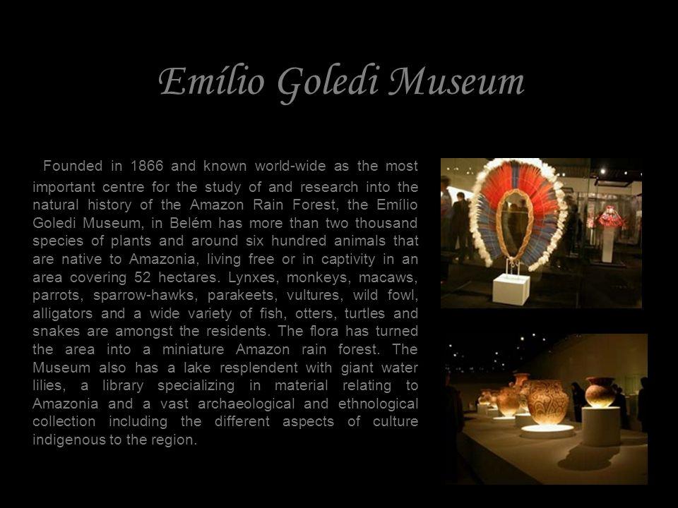 Emílio Goledi Museum