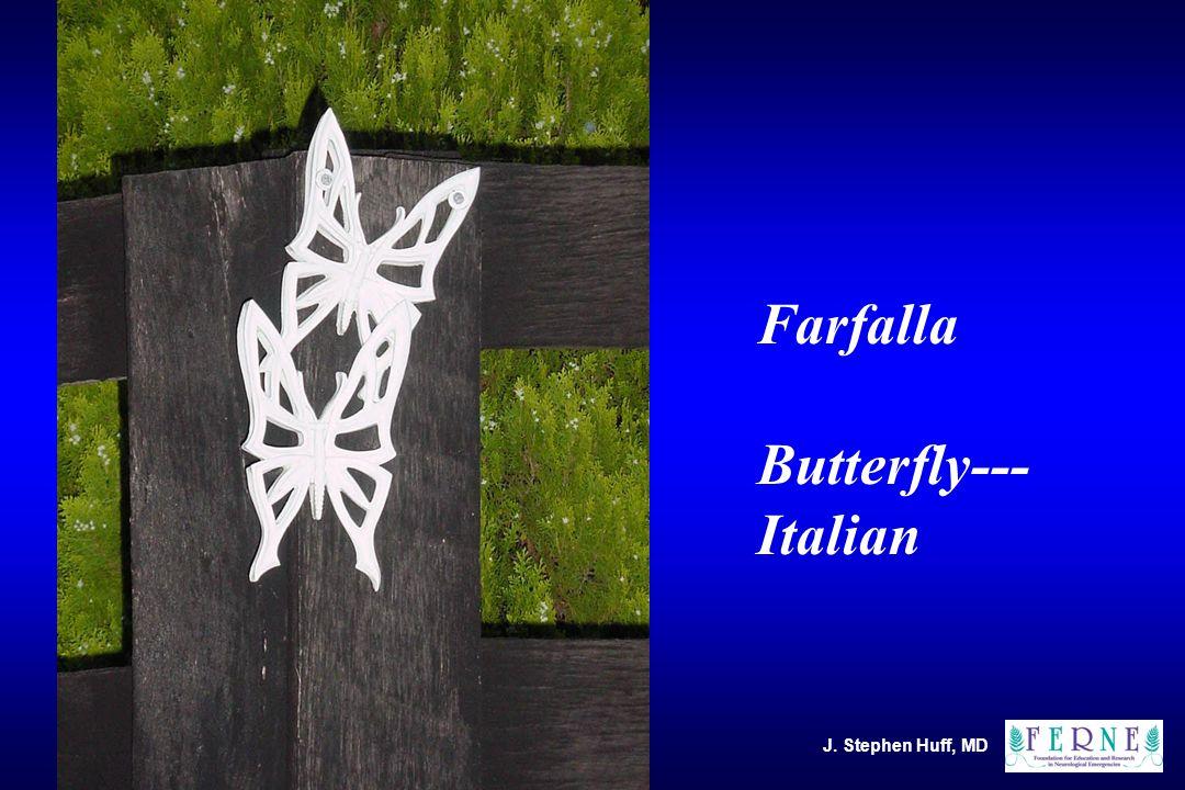 Farfalla Butterfly--- Italian J. Stephen Huff, MD