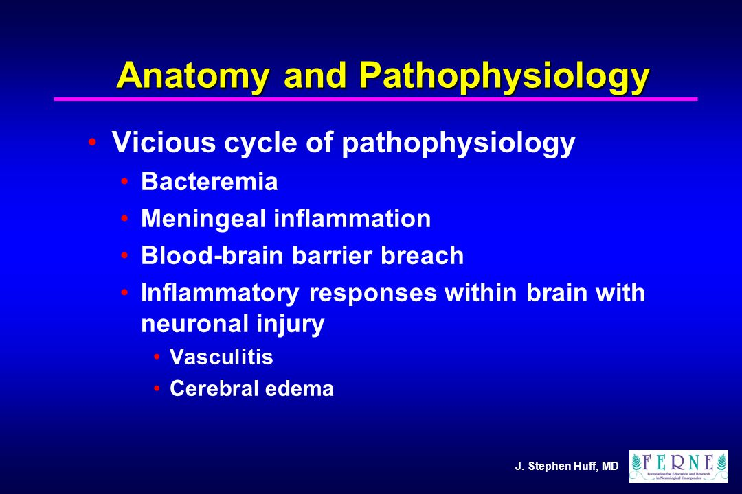 J. Stephen Huff, MD Anatomy and Pathophysiology Vicious cycle of pathophysiology Bacteremia Meningeal inflammation Blood-brain barrier breach Inflamma