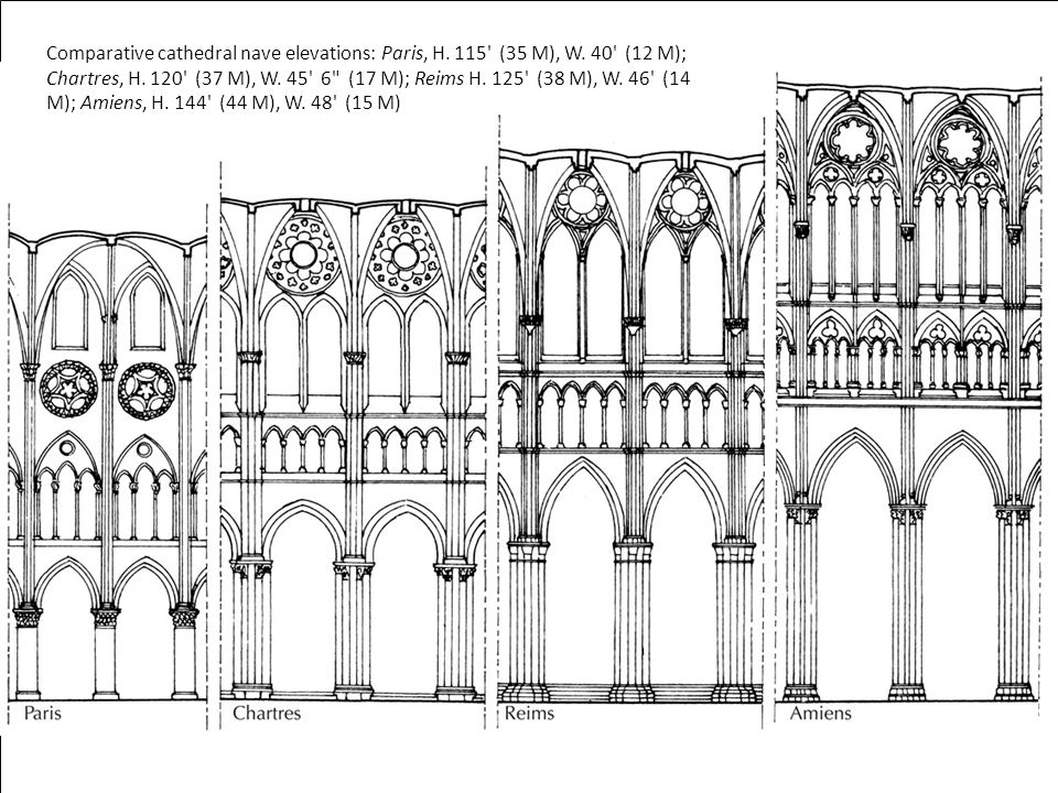 Comparative cathedral nave elevations: Paris, H.115 (35 M), W.