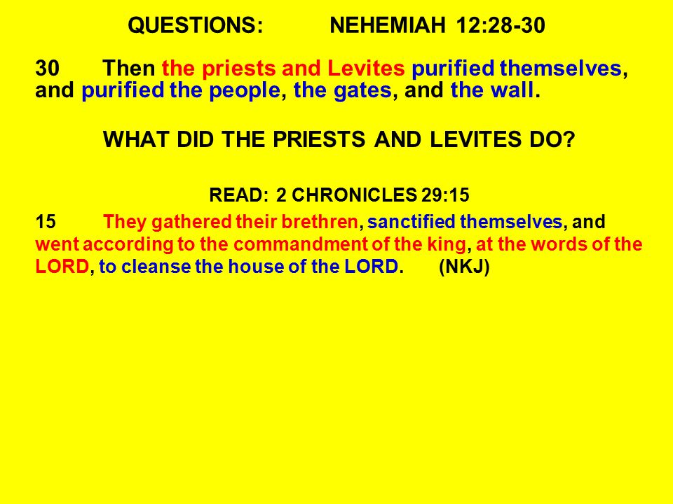 QUESTIONS:NEHEMIAH 12:28-30 30Then the priests and Levites purified themselves, and purified the people, the gates, and the wall. WHAT DID THE PRIESTS