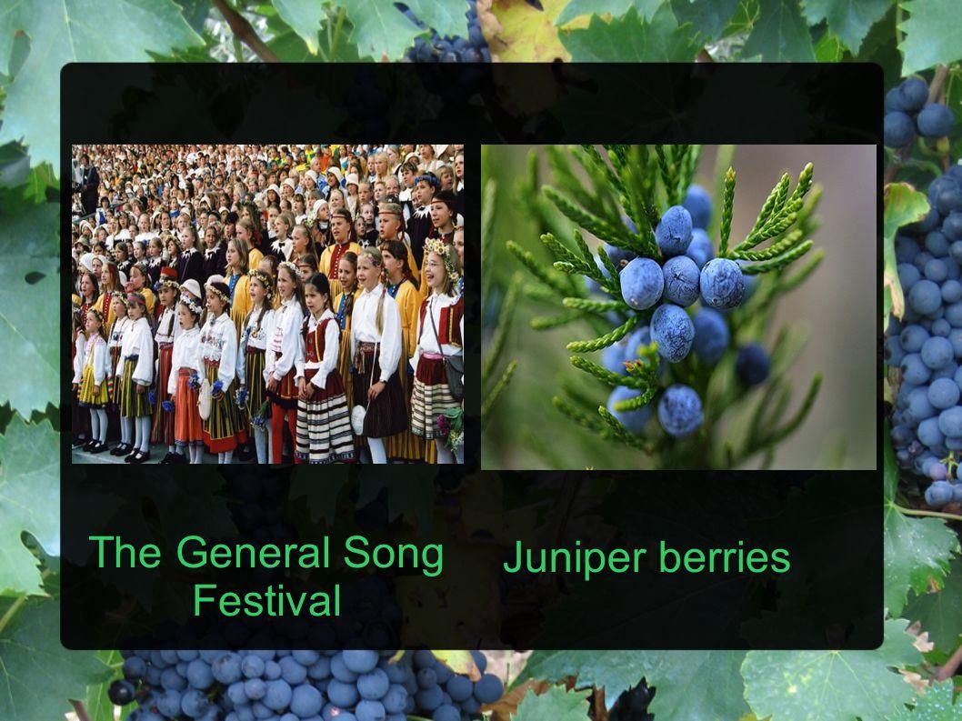 The General Song Festival Juniper berries
