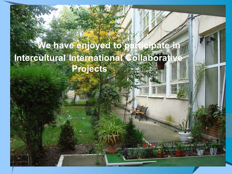 We have enjoyed to participate in Intercultural International Collaborative Projects