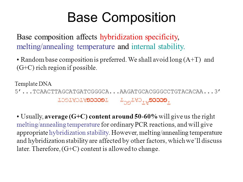 Base Composition Base composition affects hybridization specificity, melting/annealing temperature and internal stability.
